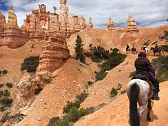 Bryce Canyon TRAP 2016