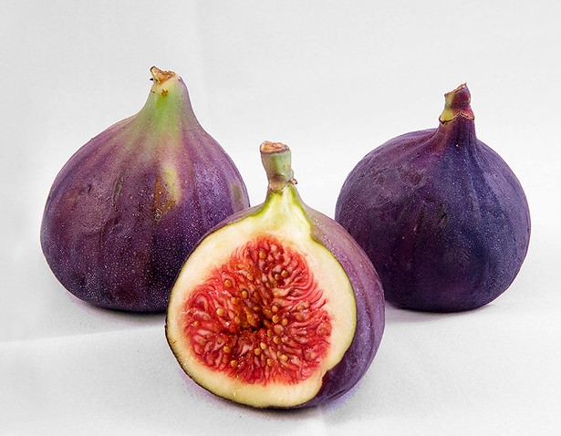 figs are a tasty addition to a container garden
