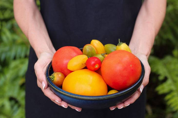 A Great Tomato Planting tip is to pick a variety of tomato types to plant in your garden.