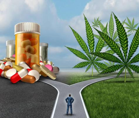 Study Shows 2 out of 3 Cannabis Patients Give Up Opioids