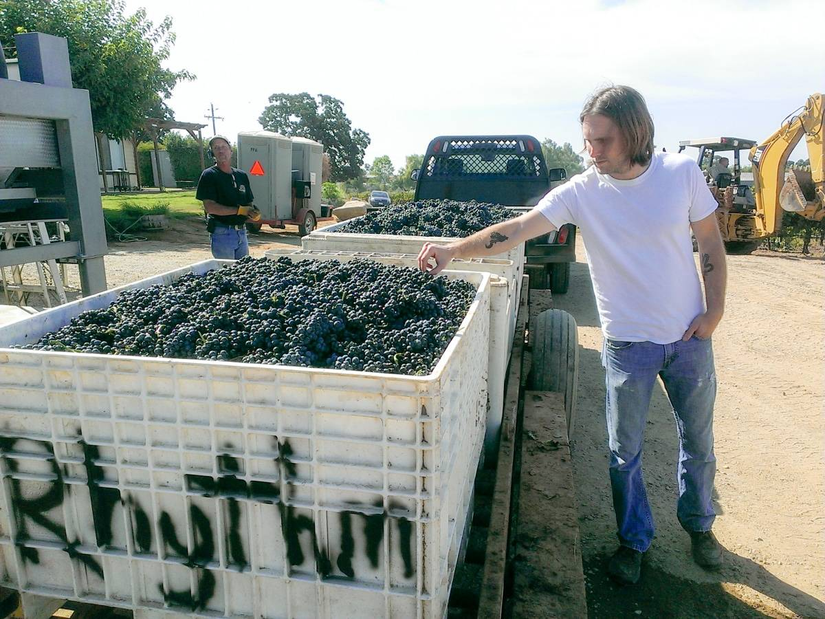 Jasper Dickson Rhythm Winery