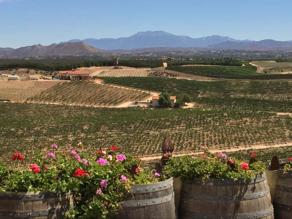 View of Temecula Wineries from Bella Vista
