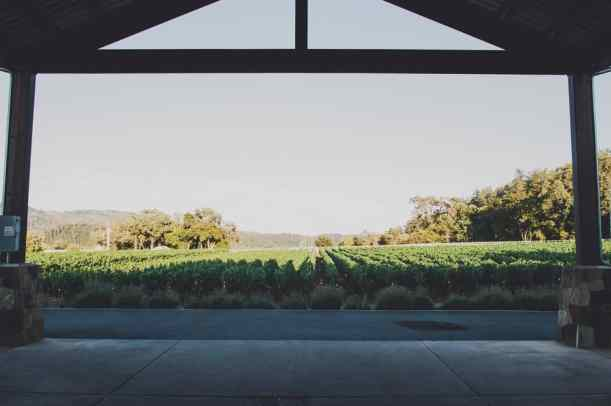 The Best Calistoga Wineries For Visitors California Winery Advisor - 6 awesome boutique wineries to visit in napa