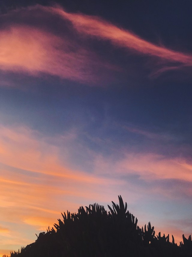 pink sunset aesthetic