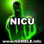 170-NICU avatare misto