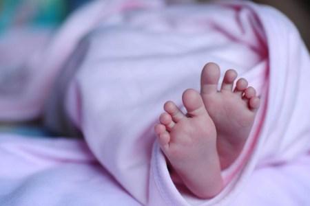 pieds de bébé nid d'ange