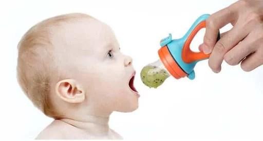 grignoteuse bébé