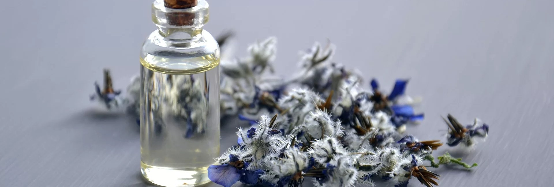 fleurs de bach : se soigner