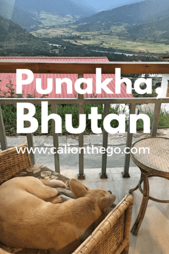 Come see beautiful scenery from Punakha Valley and the Dochula Pass. Find out why the whole town is covered in penis art and why there are so many dogs
