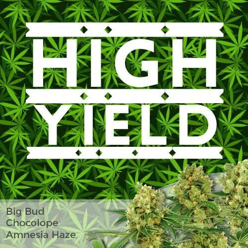 High Yield Mix
