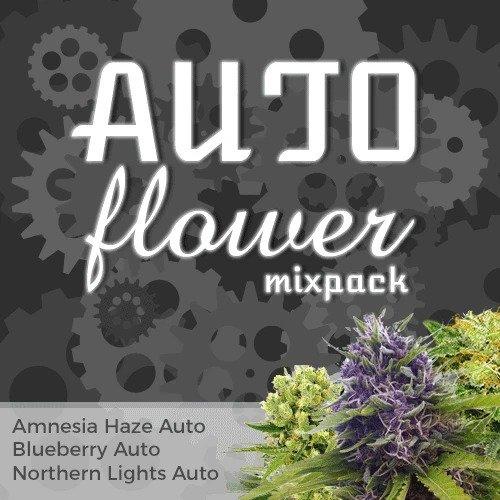 Autoflower Mix