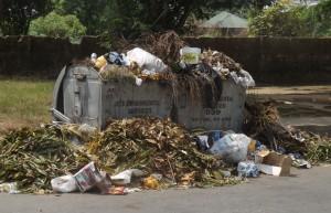 A refuse dump in Asari-Eso, a suburb in Calabar