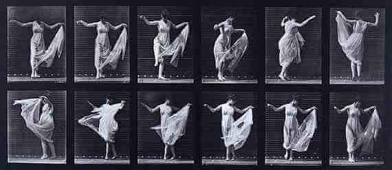 Eadweard Muybridge: Plate 187 (fancy)