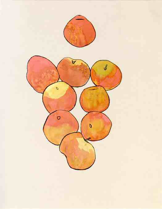 Ellsworth Kelly: Apples