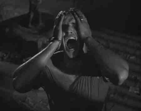 Marlon Brando cries out for Stella in A Streetcar Named Desire