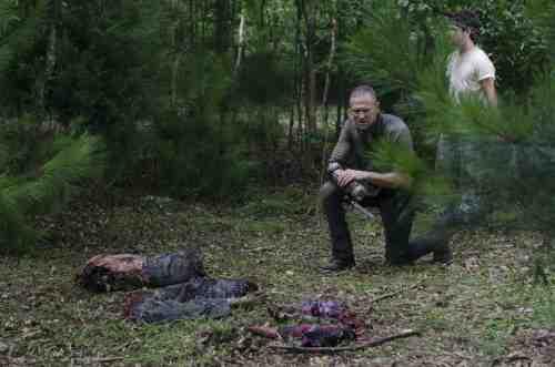 Walking Dead Michonne Merle