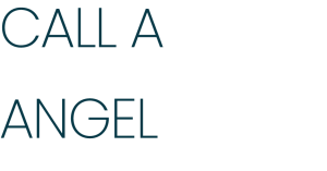 call a business angel - header