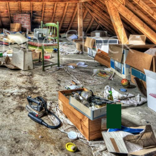 Abandoned Property Cleanouts