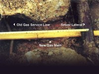 Call Before You Clear | Call your local utility company ...