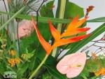 Un dernier hommage … à l'école des fleuristes #3