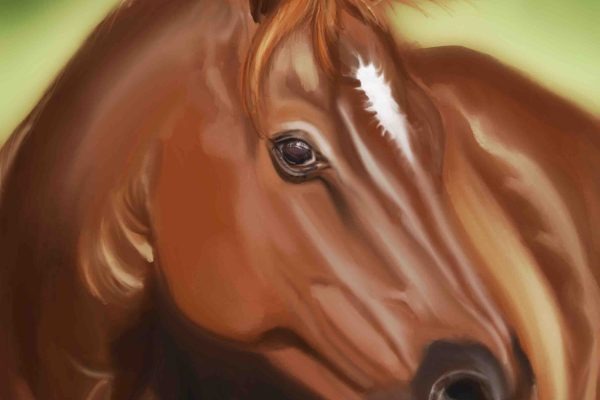 Digitally painted Horse