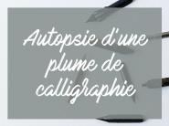 Apprendre la calligraphie, brush lettering, lettering