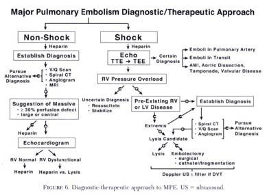 Gale Academic OneFile - Document - Major pulmonary embolism ...