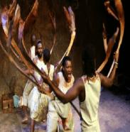 KarooMoose