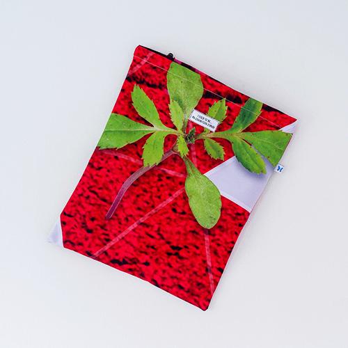 Drawstring Bag… Fleur