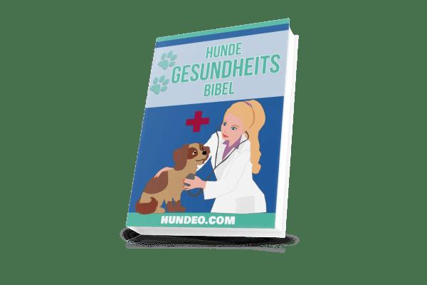Hunde Gesundheits Bibel - callweb.de