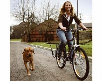 SuperPet_Dog-Along_Bicycle_Attachment