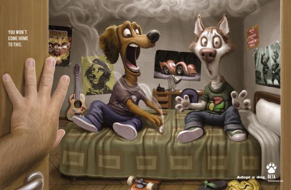 dog-adoption-smoke-small-50353