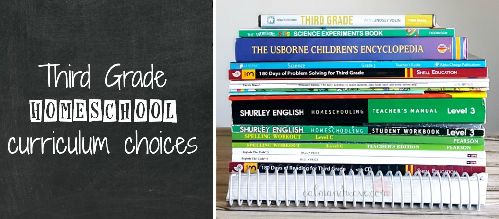 Third Grade Homeschool Curriculum Choices 2017 2018 Math Language Arts Reading Writing Science Social Studies Logic Calm Wave