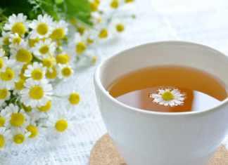 Um dos melhores calmantes naturais contra o estresse é o chá de camomila