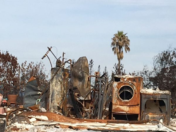 Burned appliances in Coffey Park after the 2017 wildfires in Santa Rosa—one of many blazes fueling a Capitol debate about fire insurance. Photo by Shawn Hubler for CALmatters