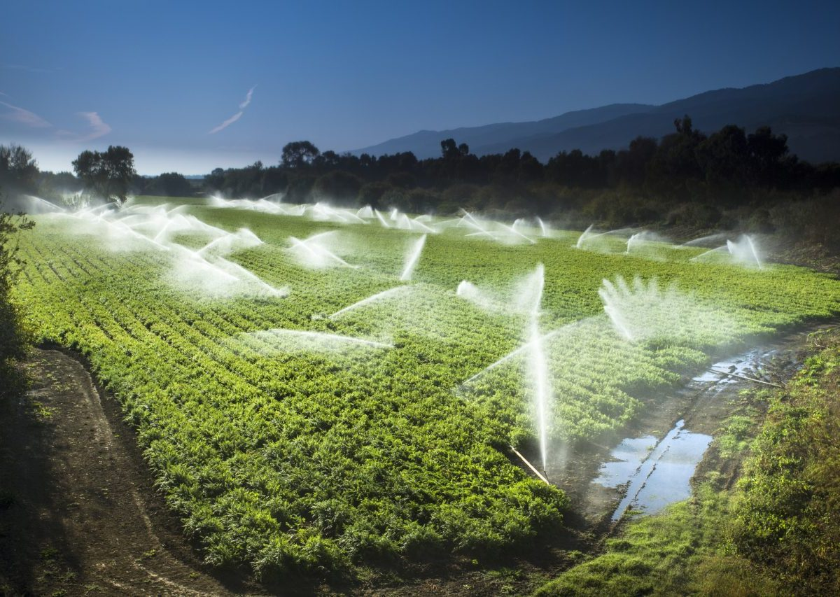 Farming needs are a flashpoint in California's water wars. Photo by Pgiam, istock.com