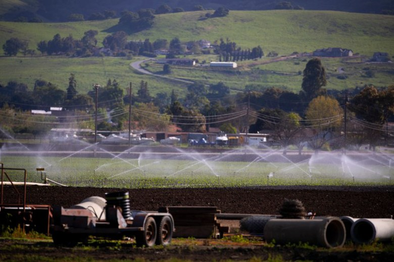 Sprinklers water a field of poblano peppers at B&T Farms in Gilroy, Calif., on Tuesday, April 9, 2019. Photo by Randy Vazquez, Bay Area News Group