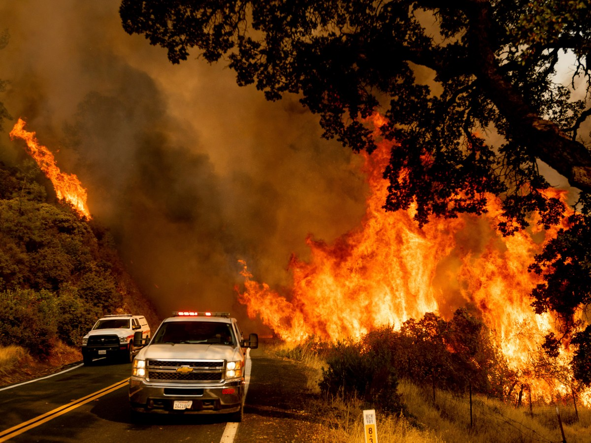 Flames from the LNU Lightning Complex fires jump Butts Canyon Rd. on Aug. 23, 2020, as firefighters work to contain the blaze in unincorporated Lake County. The fire has killed four people, destroyed 845 structures and scorched more than 340,000 acres according to Cal Fire. Photo by Noah Berger, AP Photo