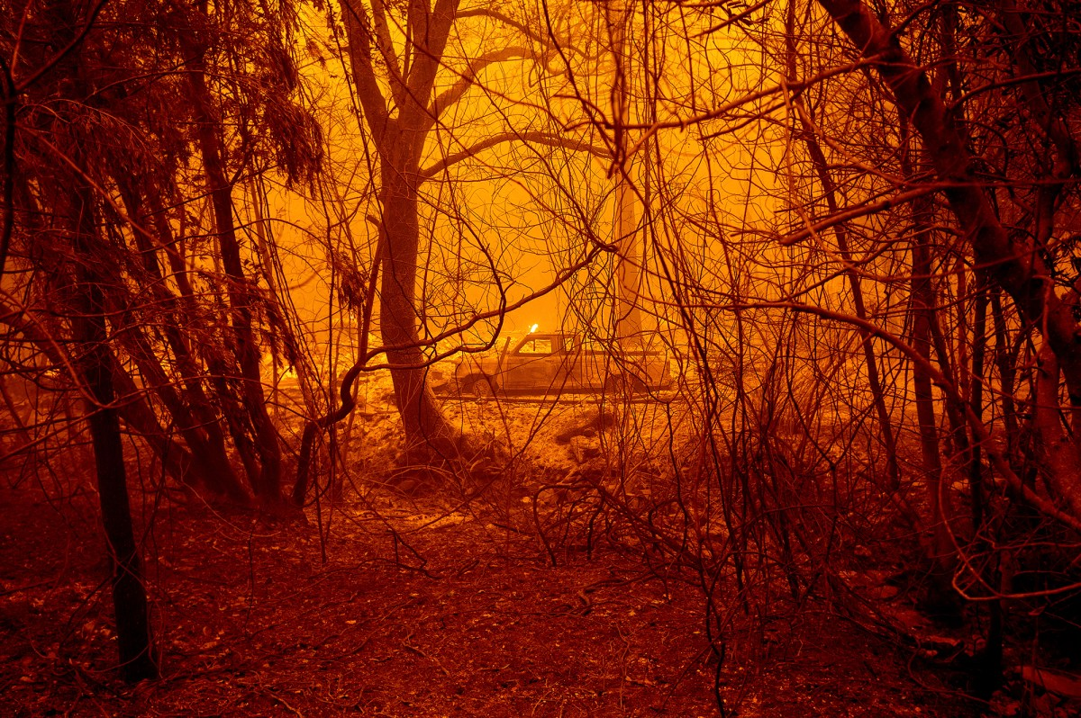 A scorched car in a clearing following the Bear Fire in Butte County on Sept. 9, 2020. The blaze, part of the lightning-sparked North Complex, expanded at a critical rate of spread as winds buffeted the region. Photo by Noah Berger, AP Photo