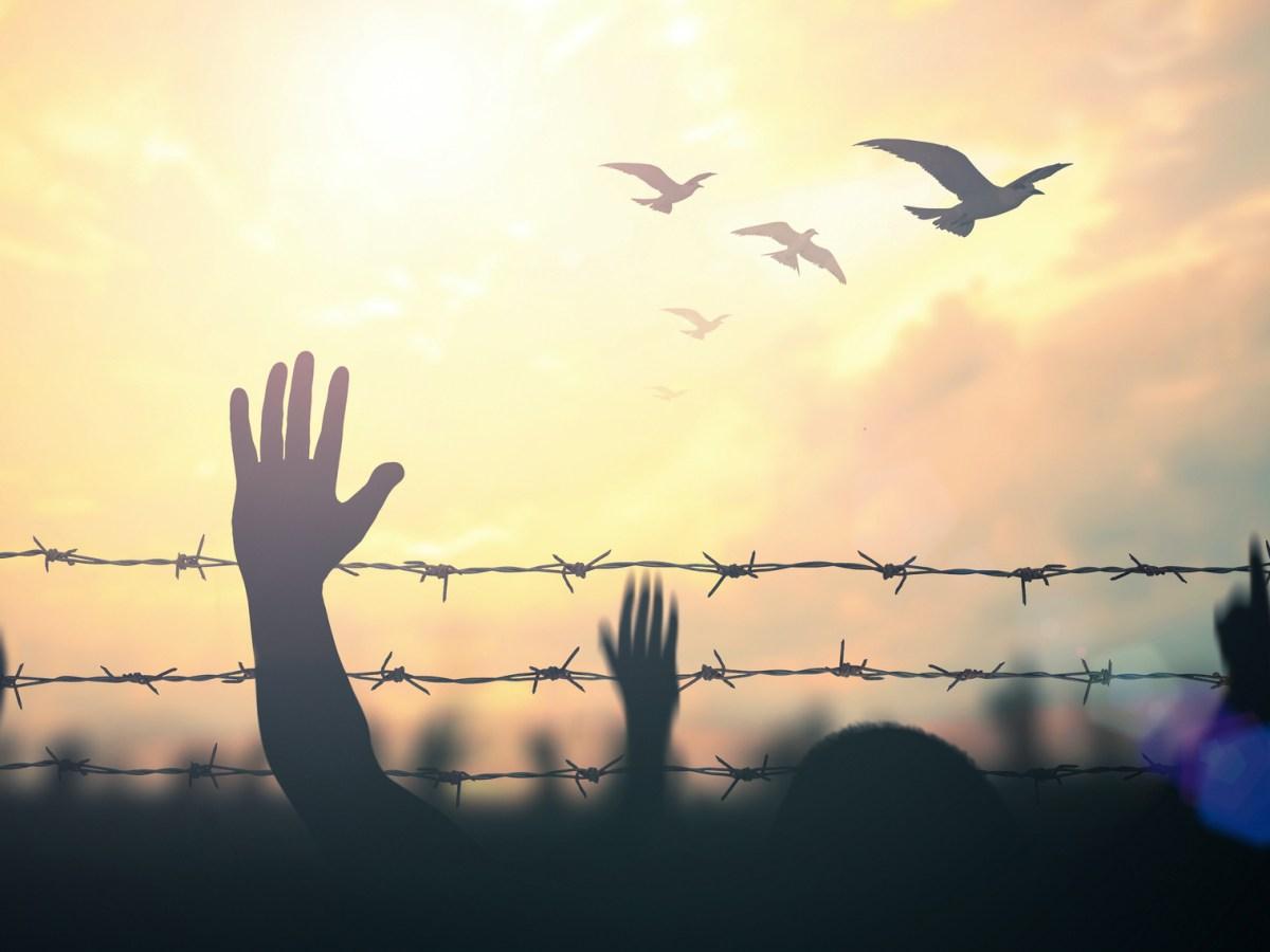 prisoner release