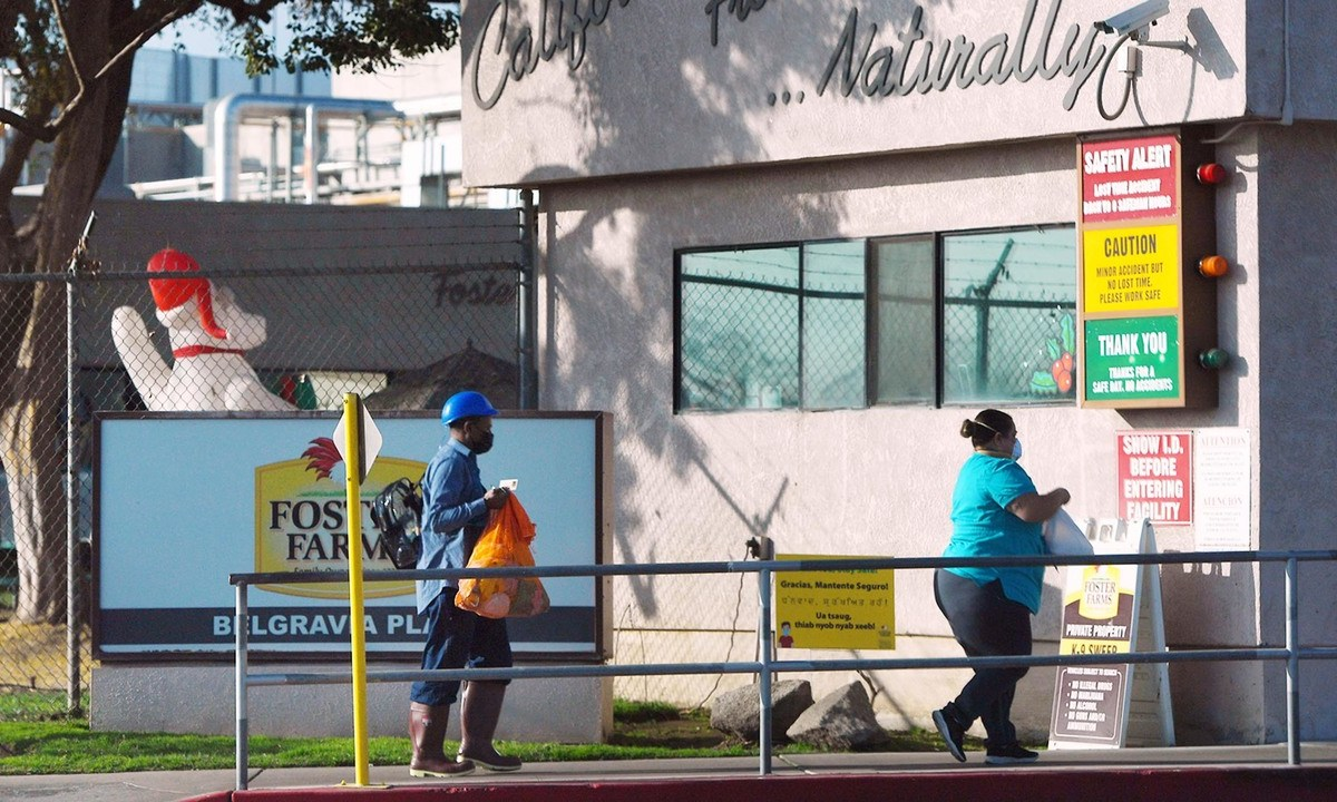 Workers arrive at the Foster Poultry Farms site at 900 W. Belgravia Ave., Wednesday afternoon, Dec. 9, 2020 in Fresno. Photo by Eric Zamora, The Fresno Bee