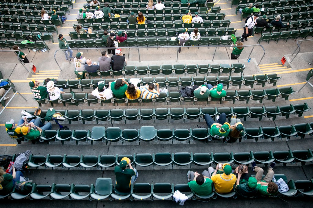 "Fans sit in ""pods"" of two or four during the game in order to maintain sufficient space between groups. Photo by Anne Wernikoff, CalMatters"