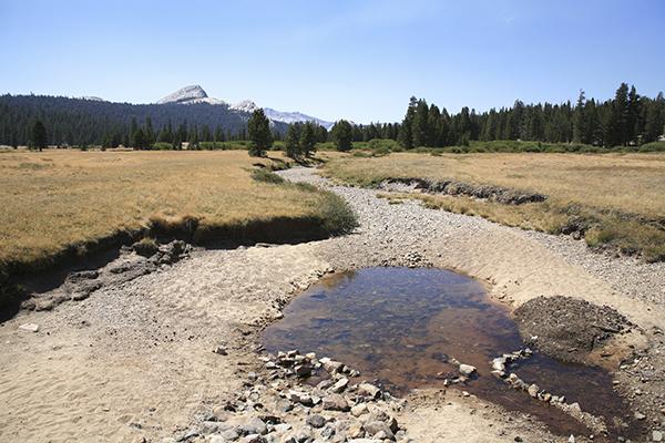 Dry creek in the Sierra Nevada