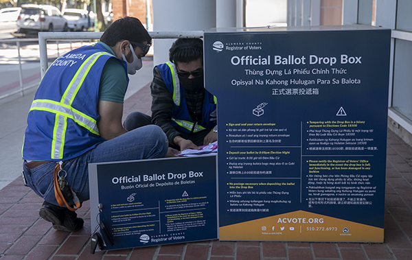 Alameda County employees Muhammad Khpalwak, left, and Sayed Sadat pick up ballots from an official ballot drop off location at Emeryville City Hall on Oct. 15, 2020. Photo by Anne Wernikoff, CalMatters