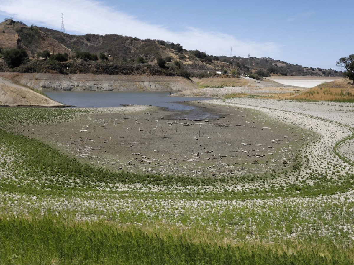 The southern section of Stevens Creek Reservoir at Stevens Creek County Park in Cupertino on June 7, 2021. Photo by Nhat V. Meyer, Bay Area News Group