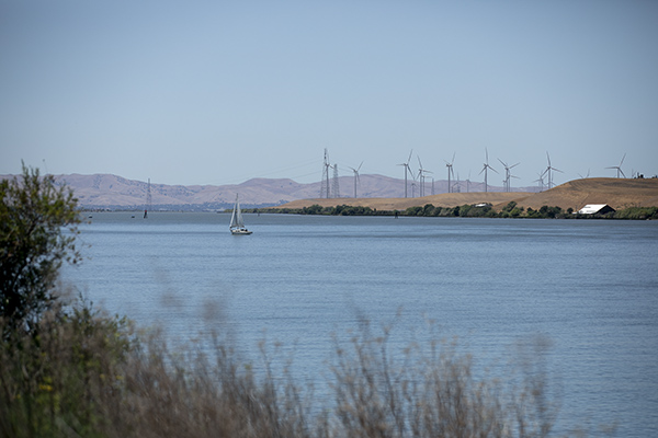 A sailboat travels along the Sacramento River near Rio Vista on June 15, 2021. The state has notified 9,000 water users from Fresno to Sacramento to stop diverting water from the San Joaquin and Sacramento rivers watershed. Photo by Anne Wernikoff, CalMatters