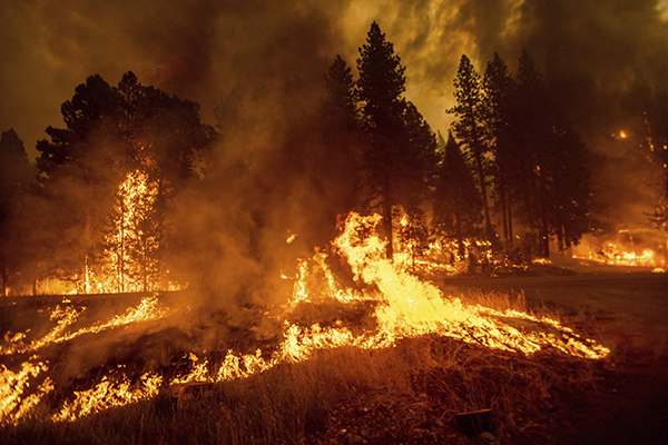 Flames from the Dixie Fire spread through the Greenville community of Plumas County on Aug. 4, 2021. The fire leveled multiple historic buildings and dozens of homes in central Greenville. Photo by Noah Berger, AP Photo