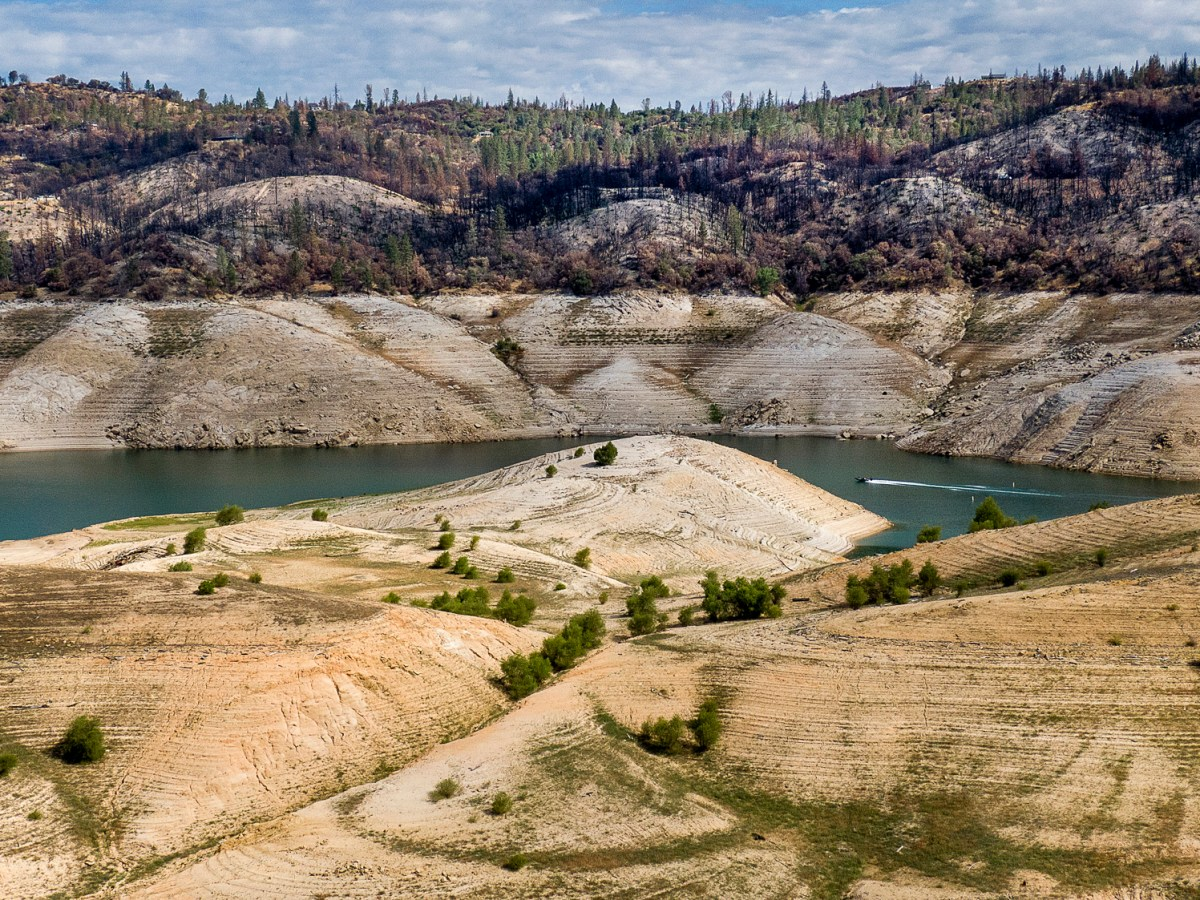 A boat crosses Lake Oroville below trees scorched in the 2020 North Complex Fire, May 23, 2021. At the time of this photo, the reservoir was at 39 percent of capacity and 46 percent of its historical average. (Photo by Noah Berger, AP Photo
