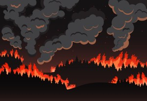 Wildfire near Lake Tahoe shows we must adapt how we care for our lands — and quickly