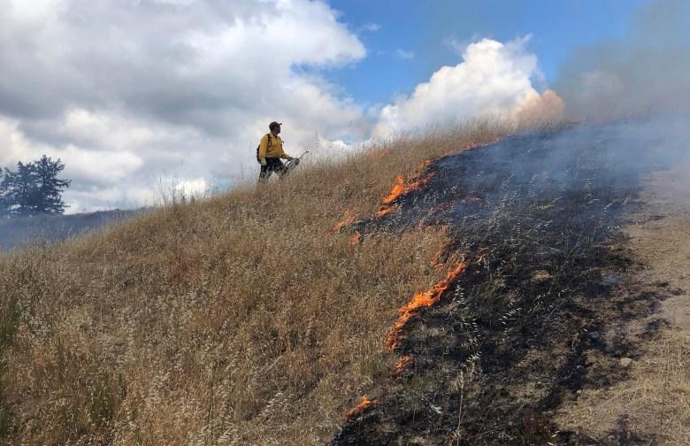 A prescribed burn in 2019. Photo courtesy of Lenya Quinn-Davidson, University of California Cooperative Extension/Humboldt County Prescribed Burn Association